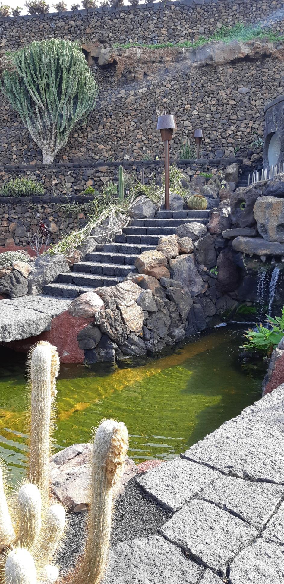 Lanzarote _ Jardin de Cactus.jpeg