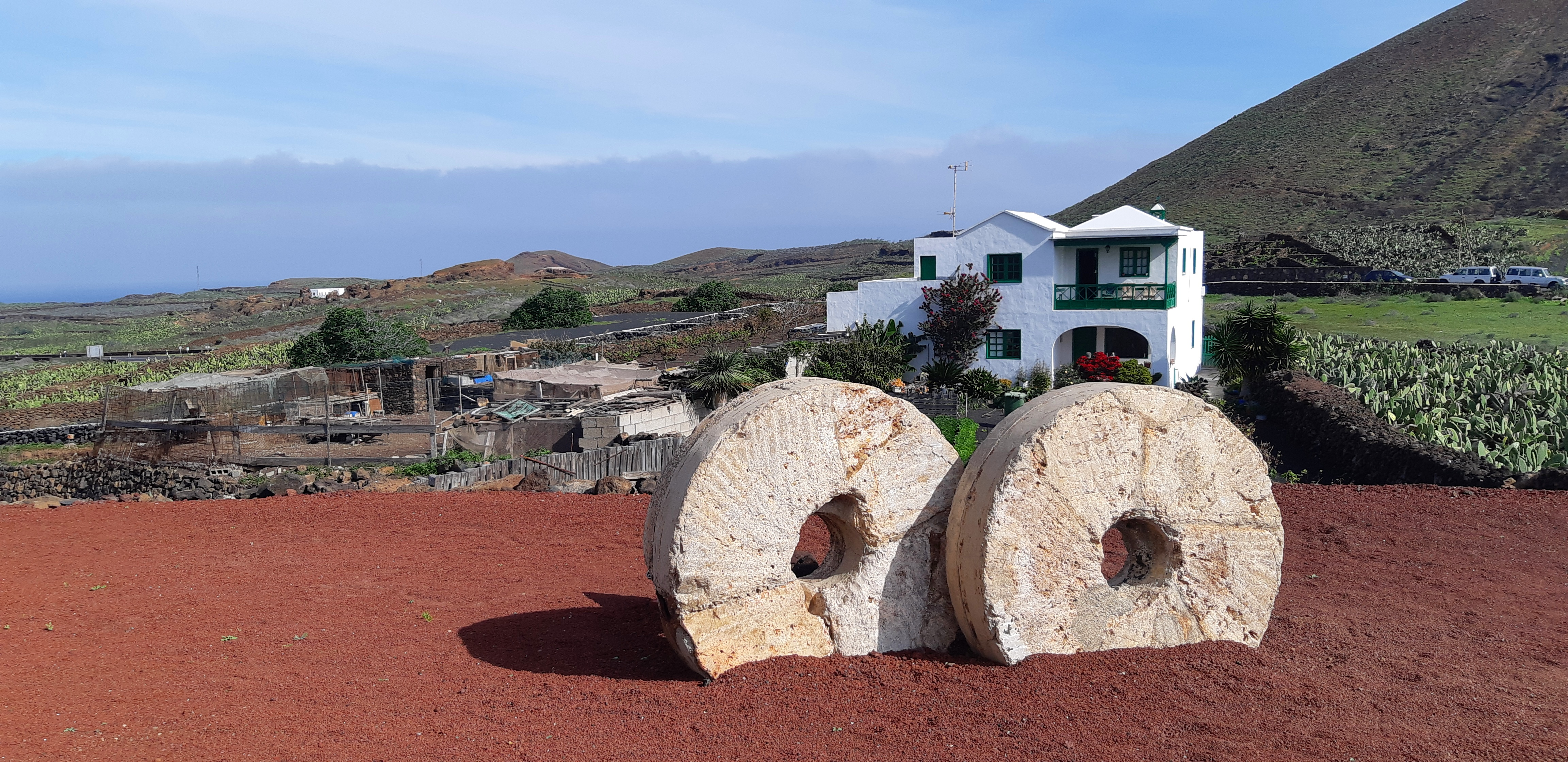 Lanzarote _ Jardin de Cactus_14.jpeg