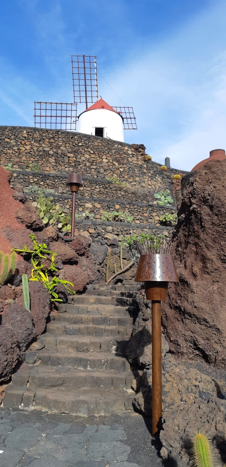 Lanzarote _ Jardin de Cactus_17.jpeg
