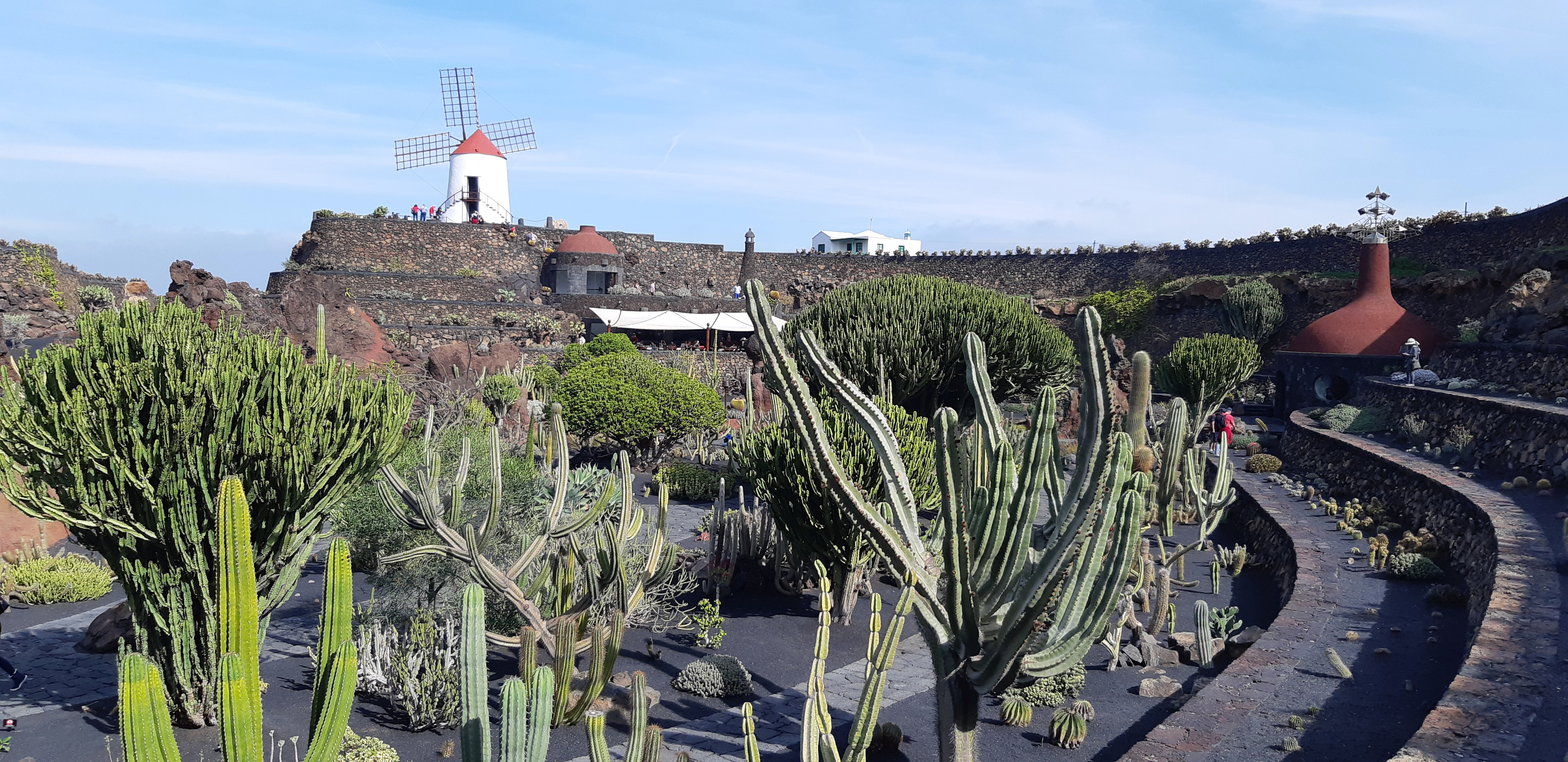 Lanzarote _ Jardin de Cactus_5.jpeg
