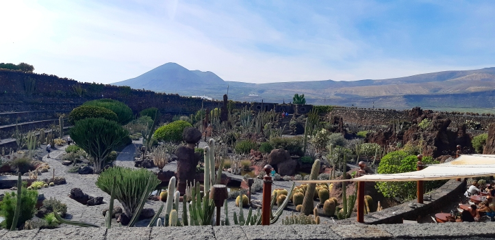 Lanzarote Jardin de Cactus-.jpg
