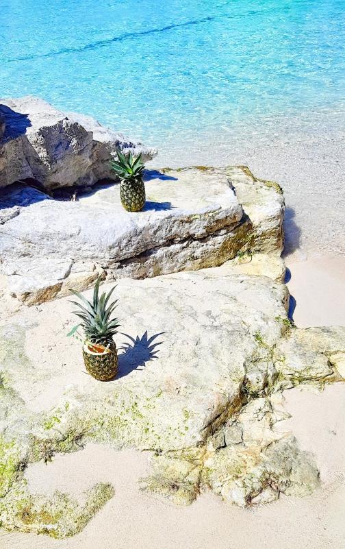 ananas-blue-lagoon-comino-malta.jpg