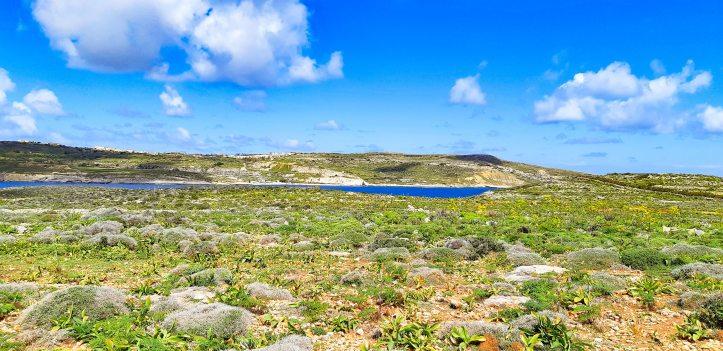 Blue Lagoon COMINO _Malta-24