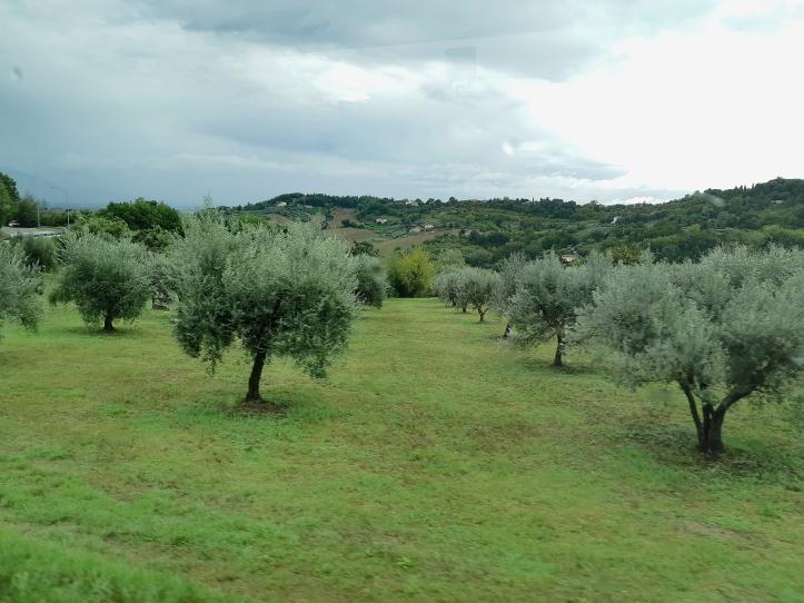 Gubbio - Perugia (24).jpg