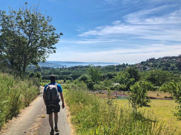 Cammino Inglese Ferrol Santiago