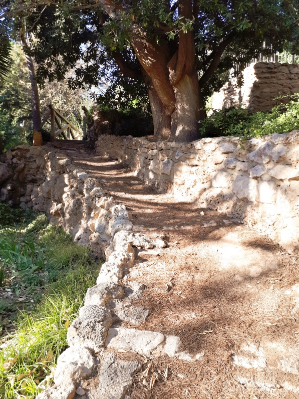 Giardini di Monforte - Valencia -6