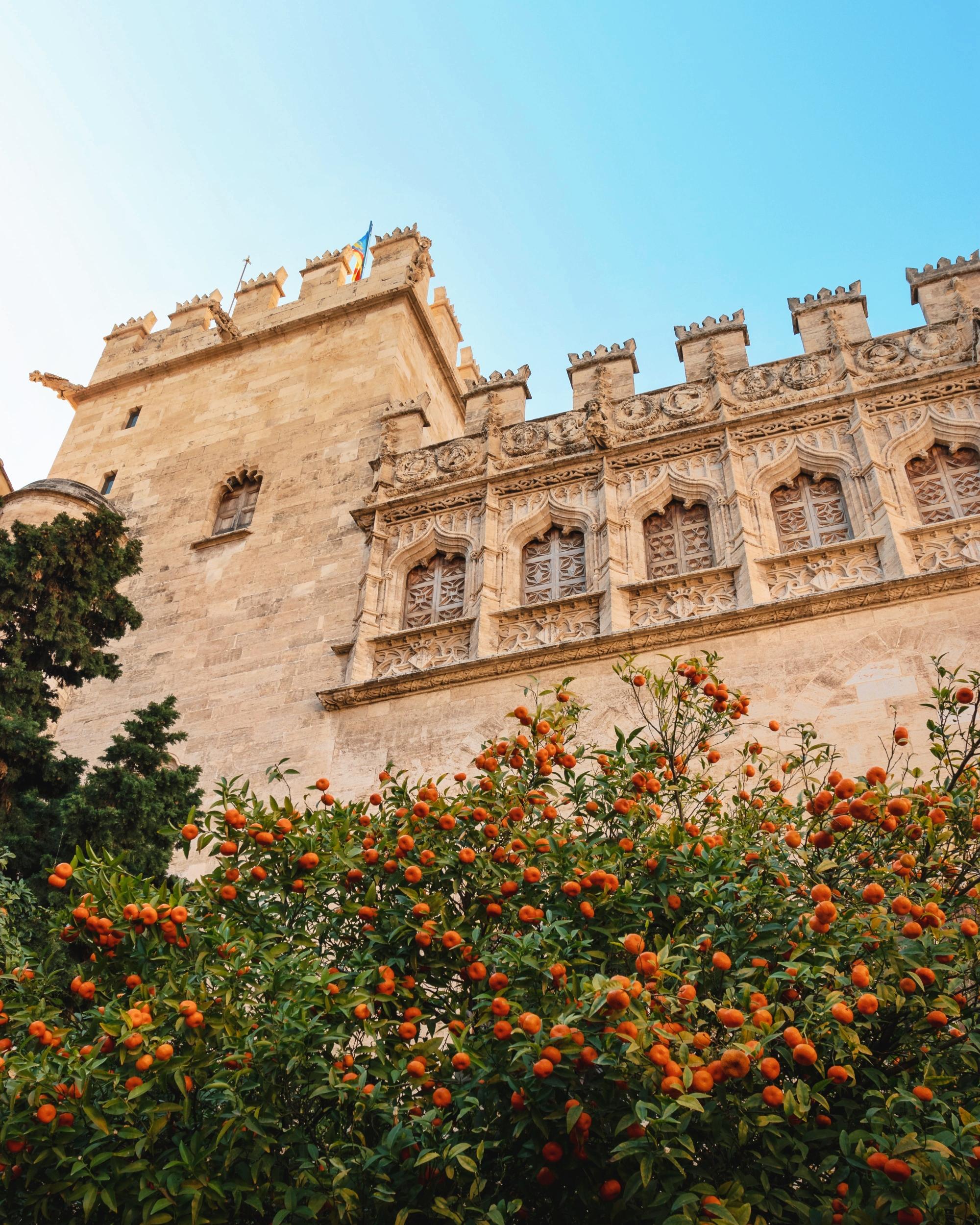 Valencia - centro storico - La Lonja - 4