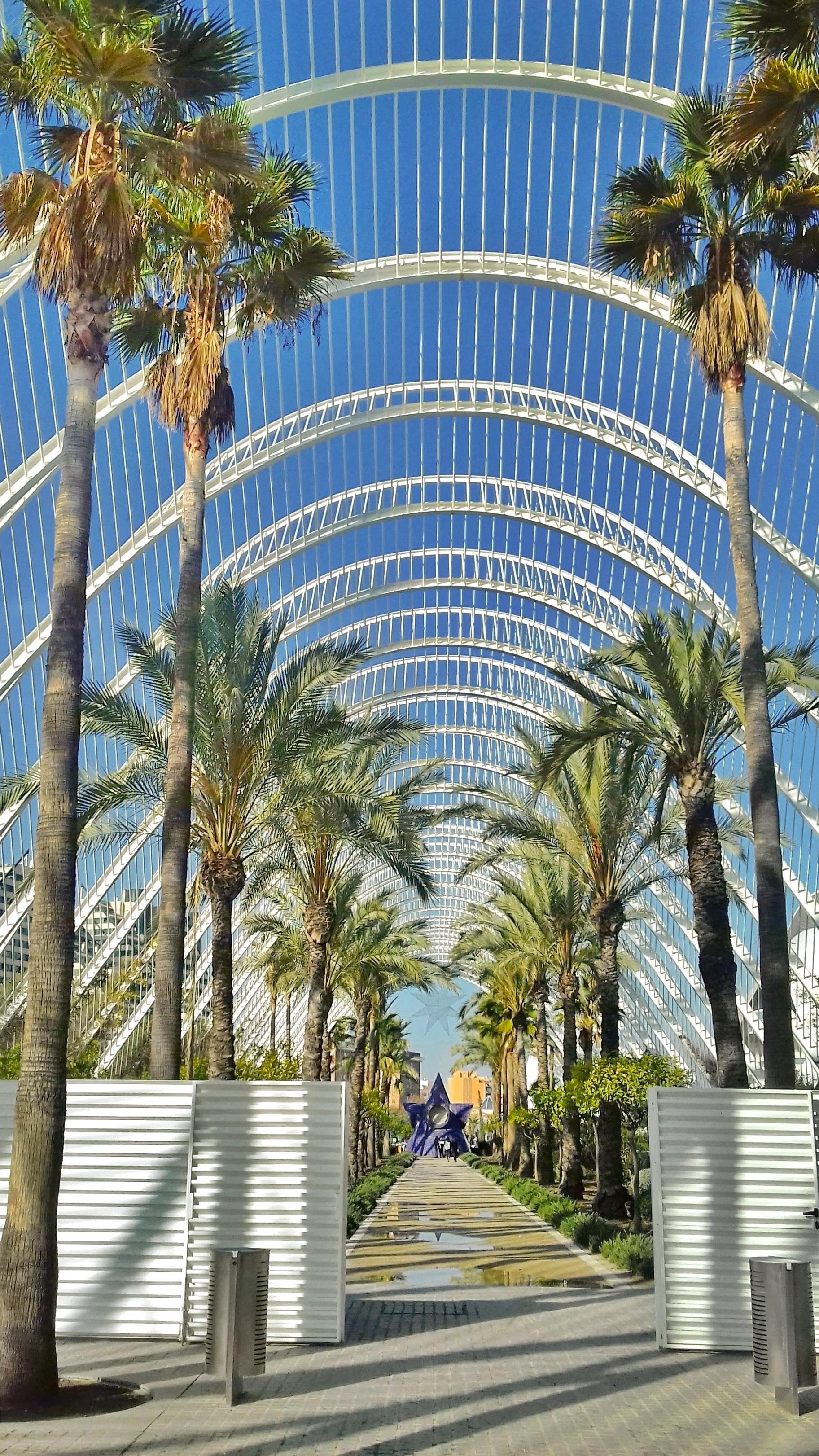 Valencia - Città delle Arti e delle Scienze - 34